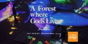 Forest Where Gods Live